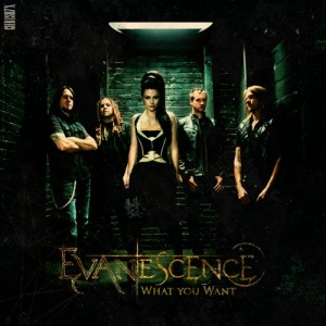 Evanescence-What-You-Want