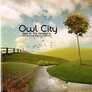 Owl-City-Deer-In-The-Headlights