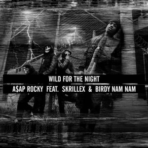 asap-rocky-wild-for-the-night