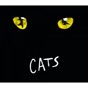 cats_memory