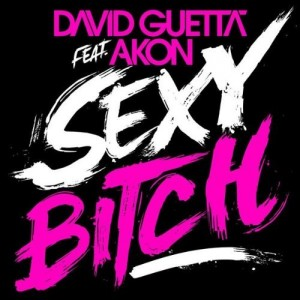 david_guetta_feat_akon_sexy_bitch